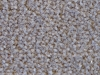 RAMM AEROSPACE R44 CARPET GREY